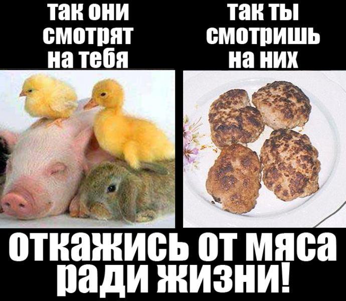 http://krug-belarys.ucoz.ru/_ph/3/224321137.jpg